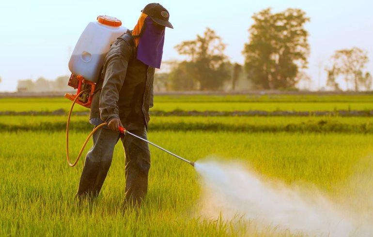 Od polja do stola – pesticidi kao glavni sastojak u našem loncu